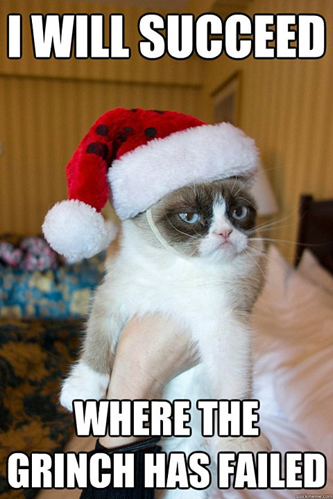Funny Meme Christmas : Steve in a speedo gross friday funny grumpy cat